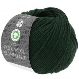Cool Wool Big Mélange GOTS...